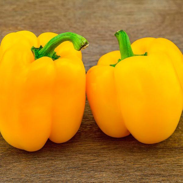 poivron-california-golden