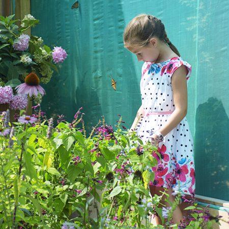 Enfact dans Jardins Michel Corbeil